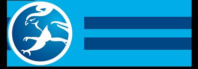 Denis Eagle Logo